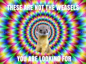 META-avoidance-weasel